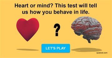 Personality Quiz Test: Heart Or Mind? This Test Will Tell Us How You Behave In Life