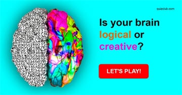 Personality Quiz Test: Is Your Brain Logical Or Creative?