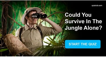 Personality Quiz Test: Could You Survive In The Jungle Alone?