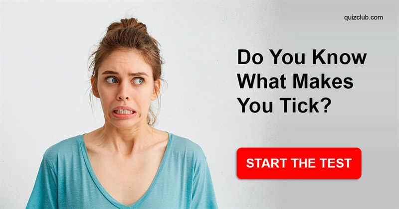 Society Quiz Test: Do You Know What Makes You Tick?