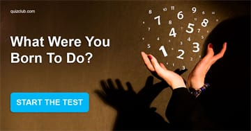 Personality Quiz Test: What Were You  Born To Do?
