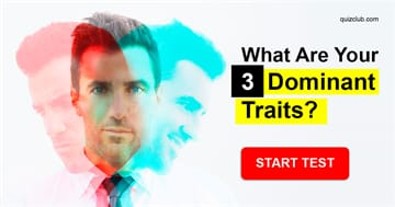 Personality Quiz Test: What Are Your 3 Dominant Traits?