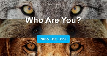 Personality Quiz Test: Are You A Wolf, Bear, or Lion?