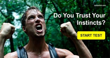 Personality Quiz Test: These 5 Questions Can Determine Just How Good Your Instincts Are!