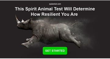 Personality Quiz Test: This Spirit Animal Test Will Determine How Resilient You Are