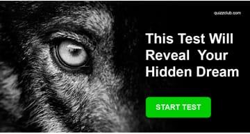 Nature Quiz Test: This Spirit Animal Test Will Reveal Your Hidden Dream