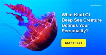 Personality Quiz Test: What Kind Of Deep Sea Creature Defines Your Personality?
