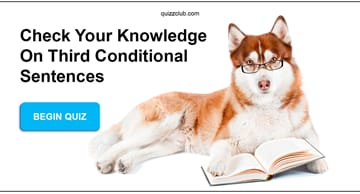 language Quiz Test: Check your knowledge on third conditional sentences