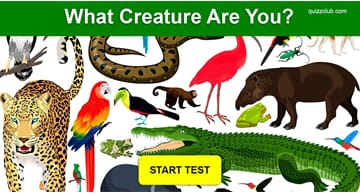 Personality Quiz Test: What Creature Are You?