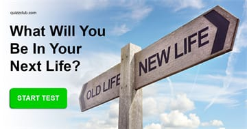 Personality Quiz Test: What Will You Be in Your Next Life?