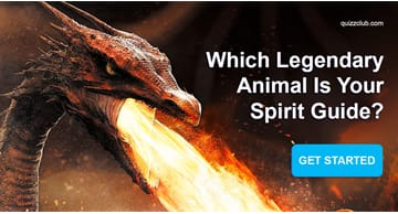 Personality Quiz Test: Which Legendary Animal Is Your Spirit Guide?