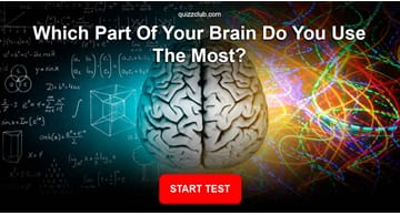 Personality Quiz Test: Are You Right Brained Or Left Brained?
