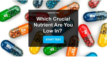 Personality Quiz Test: Tell Us Your Opinion On Snacks And We'll Tell You Which Crucial Nutrient You Are Low In