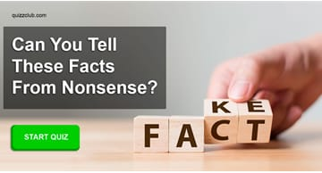 funny Quiz Test: Only 1/500 Adults Can Tell These Facts From Nonsense - Can You?