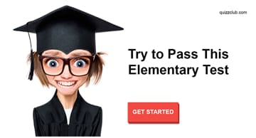 knowledge Quiz Test: 95% Of Adults Can't Pass This Elementary Test