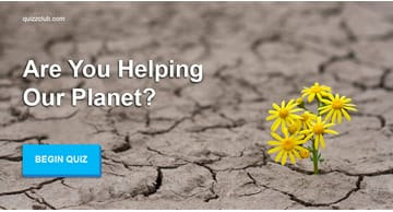 Nature Quiz Test: Are You Helping Our Planet?