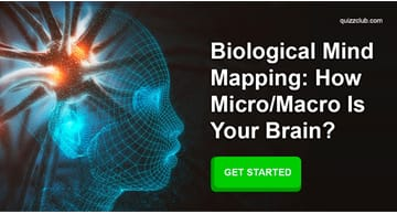 Science Quiz Test: Biological Mind Mapping: How Micro/Macro Is Your Brain?