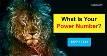 Personality Quiz Test: This Spirit Animal Test Will Reveal Your Power Number