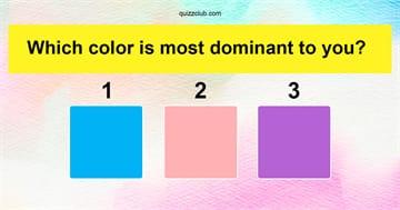 Personality Quiz Test: The Most Beautiful Test In The World Will Determine Your Dominant Emotional State!
