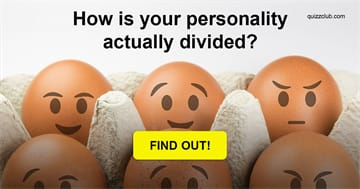 Personality Quiz Test: How Is Your Personality Actually Divided?