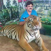 Anil Chandhok