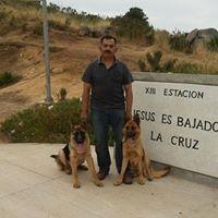 Andres Sebastian Mora Galaz