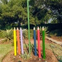 Thandi skosana