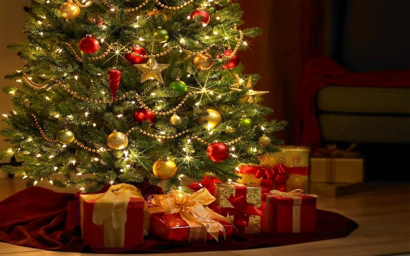 Nature Trivia Question: How long do Christmas trees grow before they are sold?