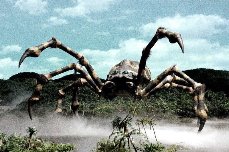 Природа Вопрос: Какой паук считается самым крупным в мире по версии Книги рекордов Гиннесса?