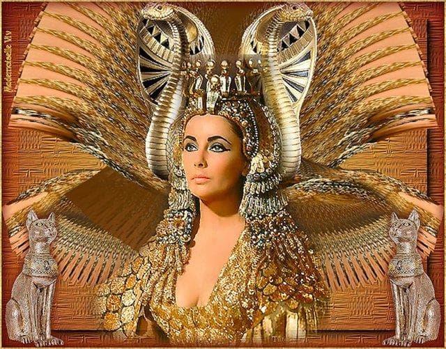 История Вопрос: Всем известная царица Клеопатра была не единственной царицей с таким именем в эллинистической династии египетских Птолемеев. Какой же по счету царицей с таким именем она была?
