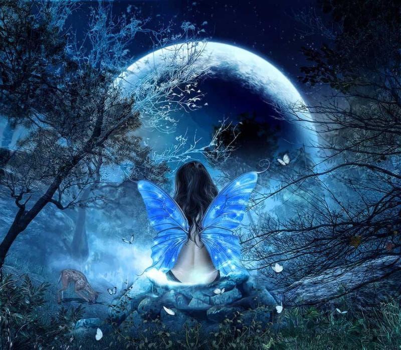 Наука Вопрос: Если наблюдатель на Земле видит в небе полную Луну, то какую фазу Земли видит наблюдатель, находящийся на Луне?