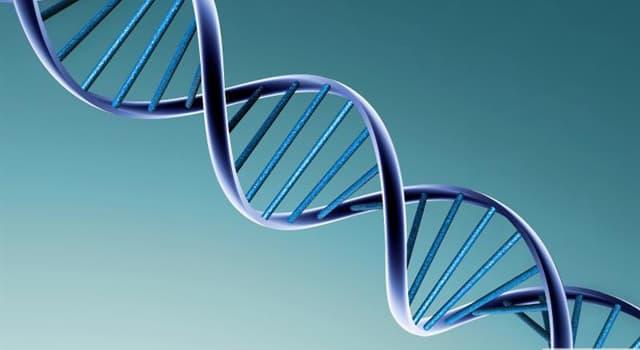 Wissenschaft Wissensfrage: Wer entdeckte die Doppelhelix-Struktur der DNA?