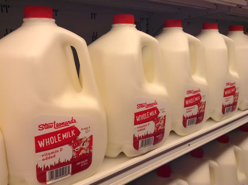 Science Trivia Question: How much does a full gallon of whole milk weigh?