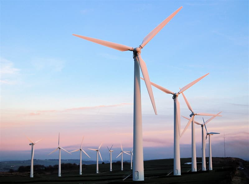 Science Trivia Question: What is the fear of the wind called?