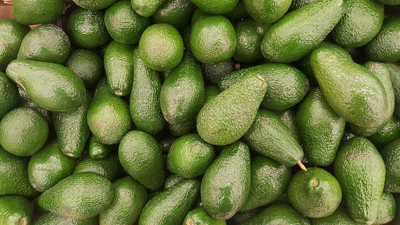 Nature Trivia Question: Is avocado considered a fruit or a vegetable?