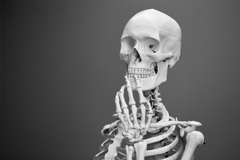 """Наука Вопрос: Откуда произошло слово """"скелет""""?"""