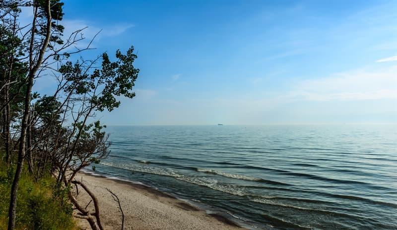 География Вопрос: Сколько стран омывает Балтийское море?