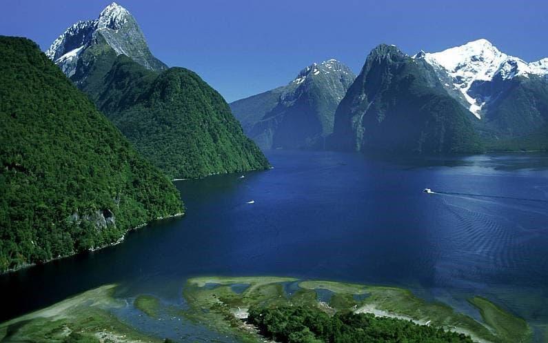 История Вопрос: В каком году европейцы открыли для себя Новую Зеландию?