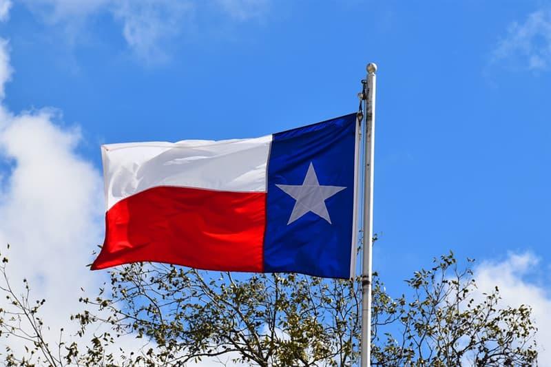 География Вопрос: Какие цветы являются символом штата Техас?