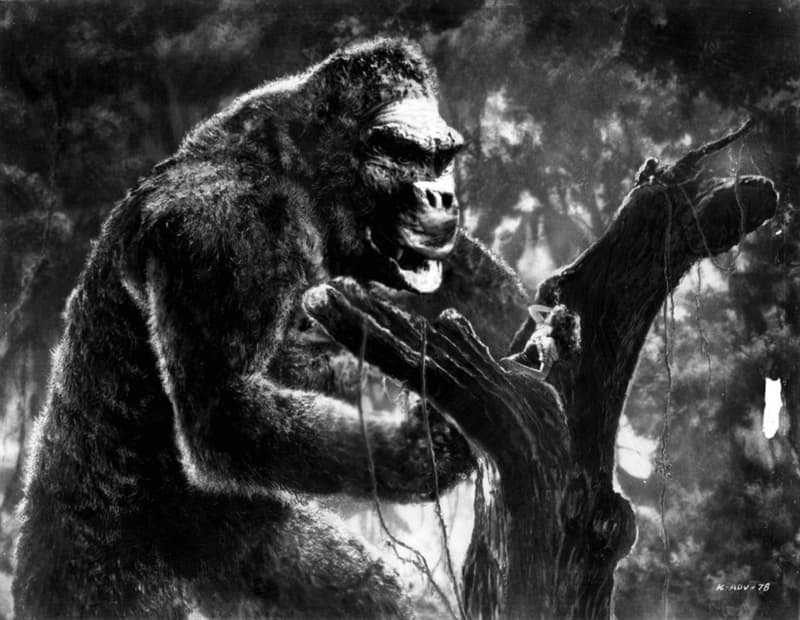 Movies & TV Trivia Question: Who was noted for the stop motion photography for the 1933 film, King Kong?