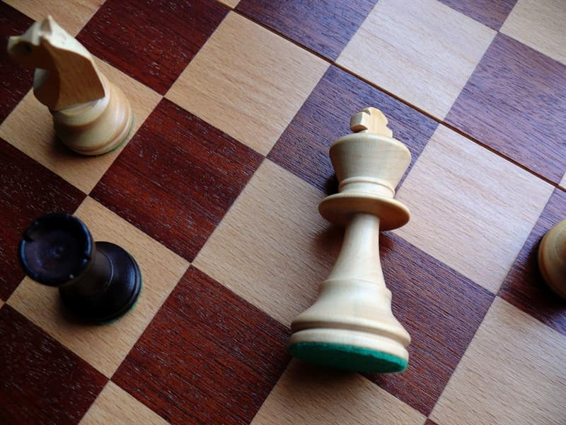 Society Trivia Question: Who was the first official world chess champion?