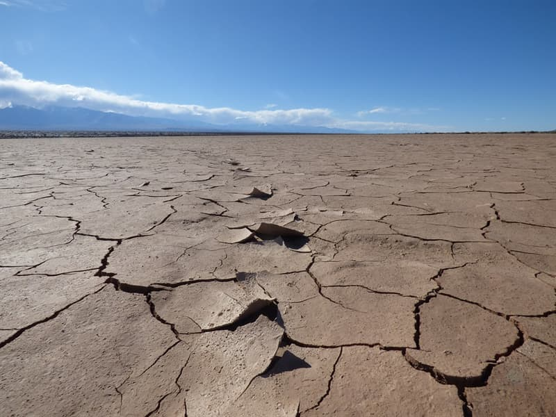 Geography Trivia Question: What is the driest non-polar desert on the planet?