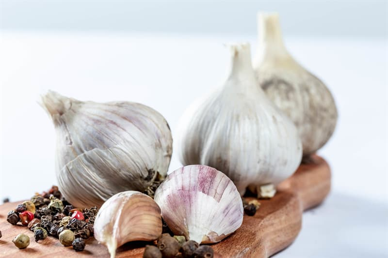 Science Trivia Question: What is the fear of garlic called?