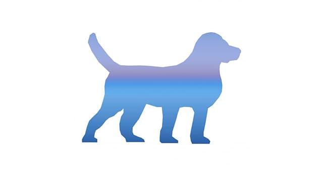 Nature Trivia Question: What is the tallest dog breed in the world?