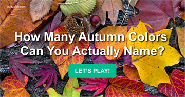 color Quiz Test: How Many Autumn Colors Can You Actually Name?