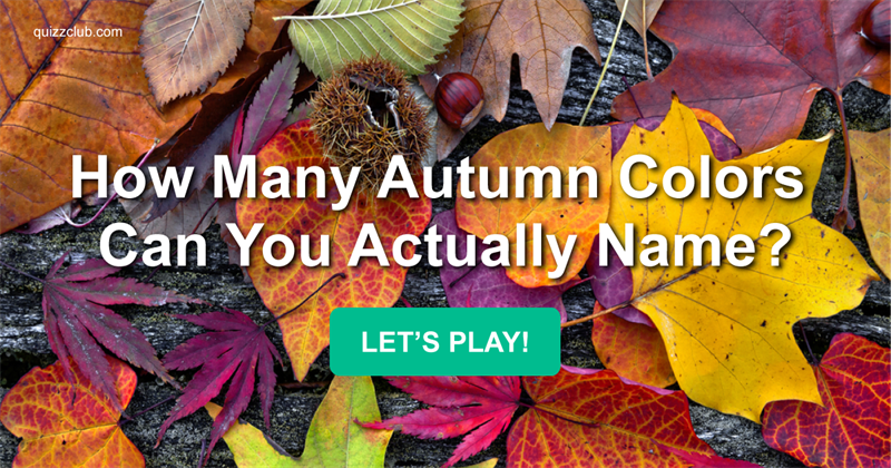 Quiz Test: How Many Autumn Colors Can You Actually Name?