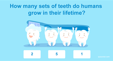 Quiz Test: Only 3% Of American Adults Passed This 2nd Grade General Knowledge Test