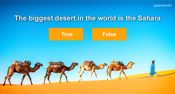 IQ Quiz Test: True or False: Test Your Fast Facts Knowledge!