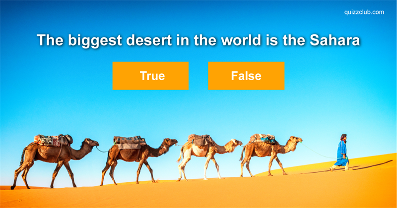 True or False: Test Your Fast Facts Knowledge!