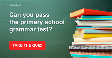 Quiz Test: Can you pass the primary school grammar test?